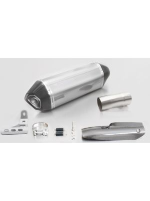 HEXACONE, slip on (muffler with connecting tube) incl. CARBON heat protecting shield for BMW R 1200 R/RS, stainless steel, 66mm, incl. EC homologation